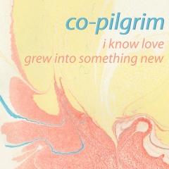 Co-Pilgrim single artwork