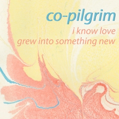 Co-Pilgrim single artwork